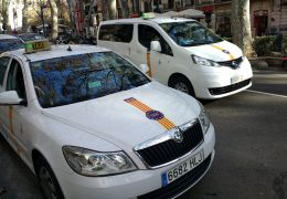 taxis in palma